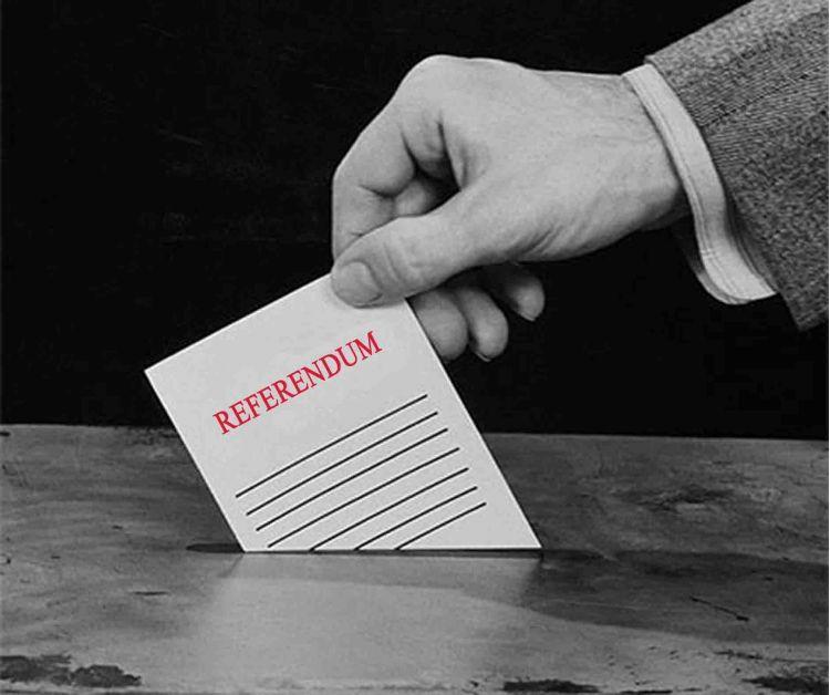 43 referendum immagine 93103