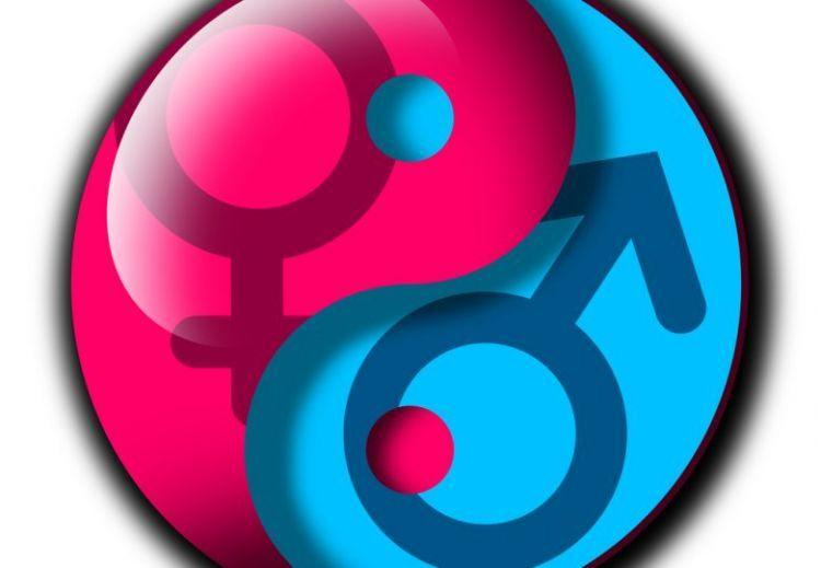 masculine feminine 780x540 50bfc